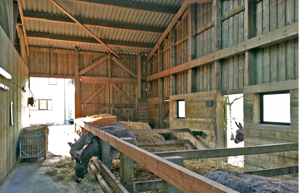 Houten landbouwloods voor bioboerderij projecten bast - Architectuur en constructie ...